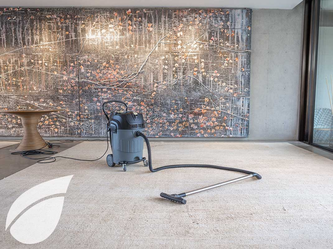 Limpieza de alfombras 1